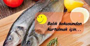 Balık kokusu nasıl gider, evden balık kokusu nasıl geçer