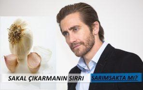Sarımsak_sakal_cikarir mi