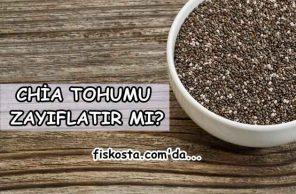Chia tohumu nedir, zayıflatır mı?