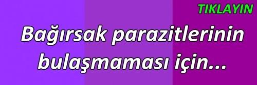 bagirsak_parazitleri_sizi_korkutmasin_fiskosta