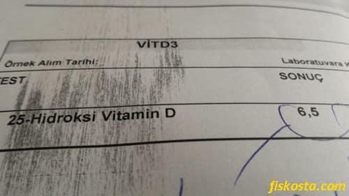 D vitamini değeri 6